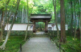 竹の寺(地蔵院)